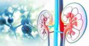 azotemia-reni