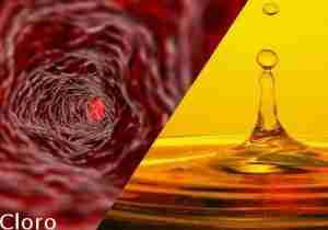 cloro urine cloro sangue